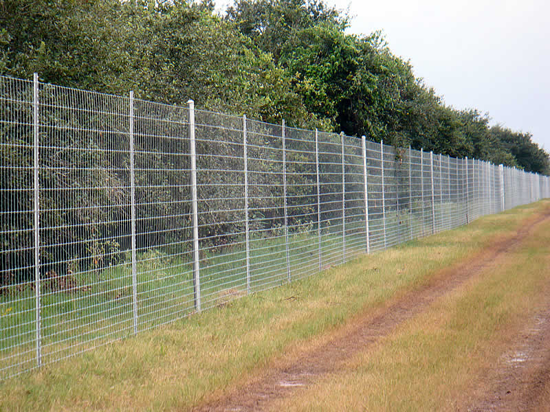 Deer Fence J Mark Threadgill Amp Company Fencing Contractor